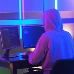 Profile picture of user Faxriddin Xushnazarov